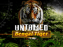 Untamed Bengal Tiger Слот