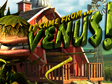 It Came From Venus играть на деньги в Эльдорадо