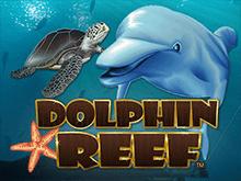 Dolphin Reef играть на деньги в клубе Эльдорадо